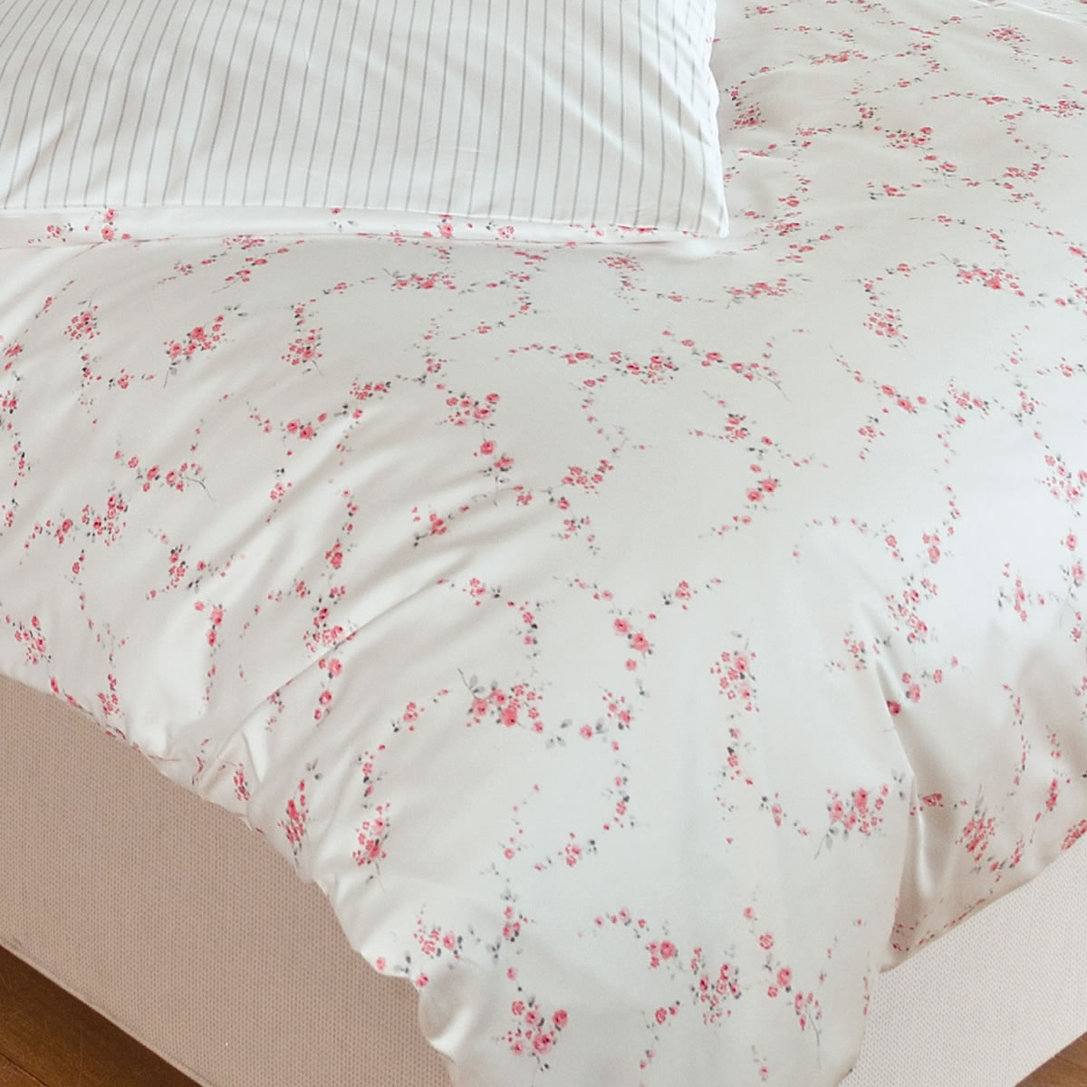 Janine Design Mako-Satin Bettwäsche Romantico 46009-01