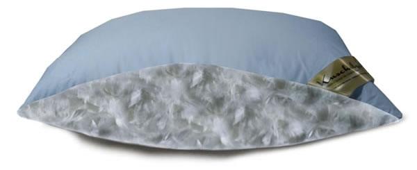 2x kopfkissen mit 70 federn und 30 daunen in 80x80 cm kissen in blau mit biese ebay. Black Bedroom Furniture Sets. Home Design Ideas