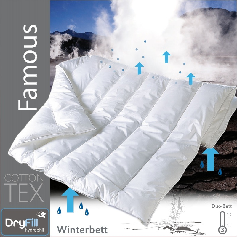 centa star famous duo decke 155x200 winterdecke 1 wahl winterbett bettdecke ebay. Black Bedroom Furniture Sets. Home Design Ideas
